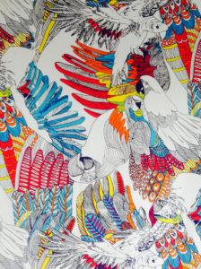 colour full fabrics Dial a Curtain